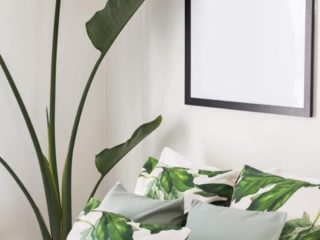 Up Style Home Styling Christchurch